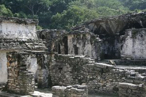 Photograph taken of Mayan ruins